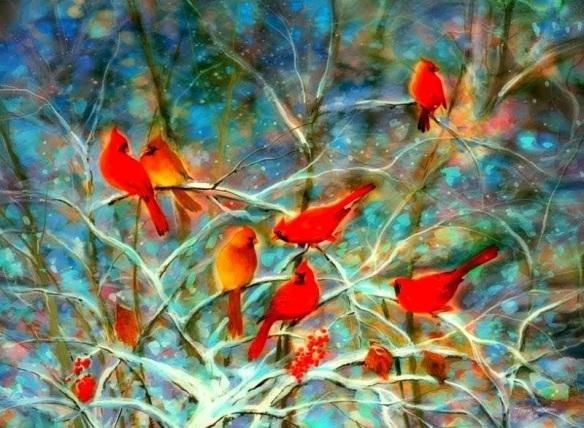 oiseaux-rouges