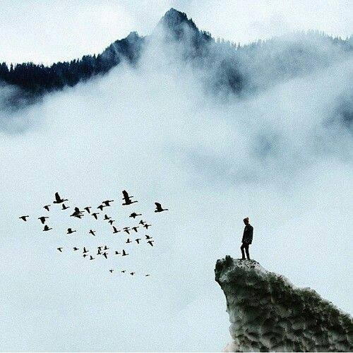 solitude-et-presence
